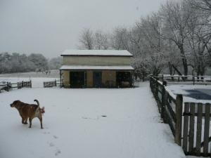 snow-0012